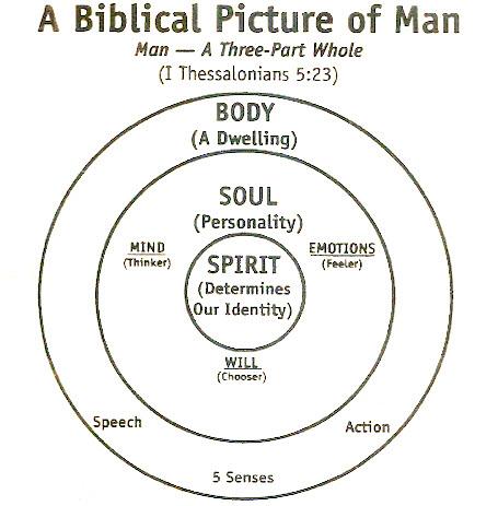 Body of Soul