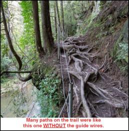panther creek 3